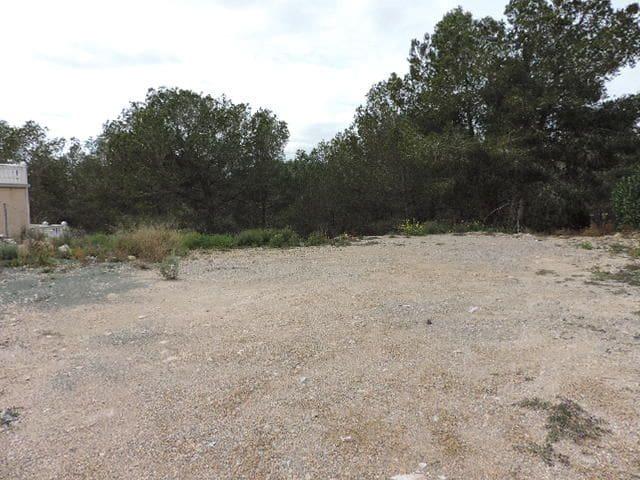 Landgrundstück zu verkaufen in Pinar de Campoverde - 115.000 € (Ref: 5709554)