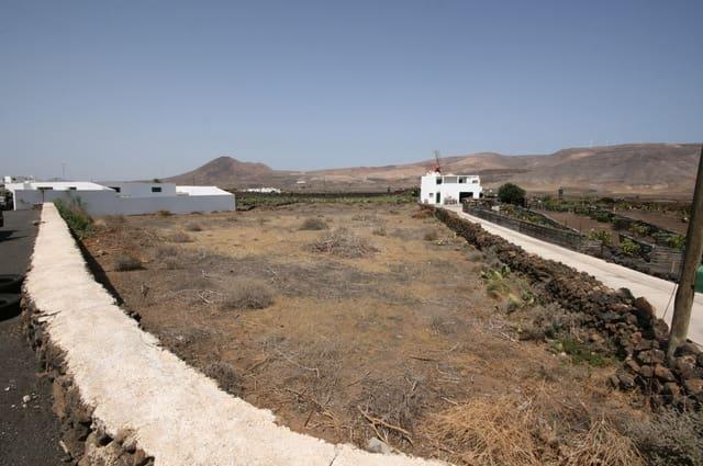 Grunde uden byggetilladelser til salg i Guatiza - € 150.000 (Ref: 3577994)