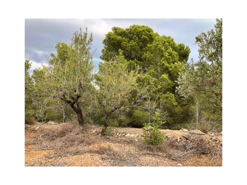 1 soveværelse Træhus til salg i L'Ampolla - € 65.000 (Ref: 5898394)
