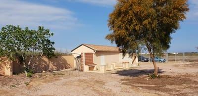 2 Zimmer Finca/Landgut zu verkaufen in Guardamar del Segura - 89.900 € (Ref: 4913596)