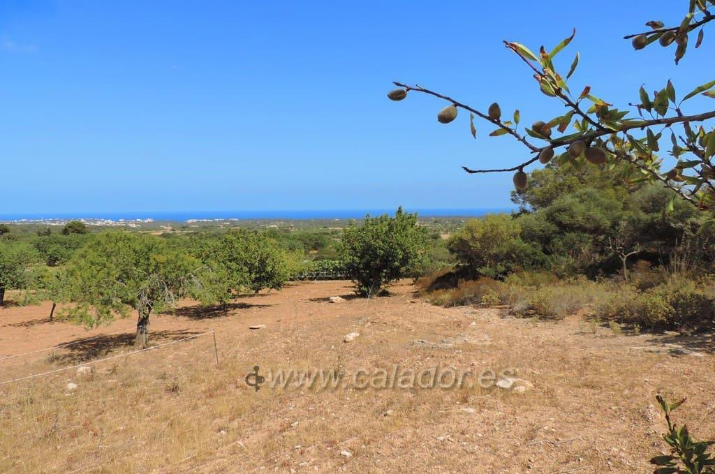Byggetomt til salgs i L'Horta / S'Horta - € 675 000 (Ref: 4738019)