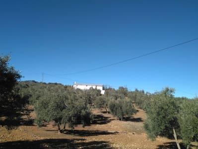 Finca/Casa Rural de 4 habitaciones en Loja en venta - 55.000 € (Ref: 3961125)