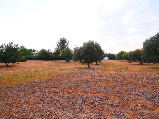 Terrain à Bâtir à vendre à Pedralba - 20 000 € (Ref: 5734890)
