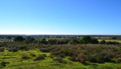 Undeveloped Land for sale in Villablanca - € 140,000 (Ref: 4972578)
