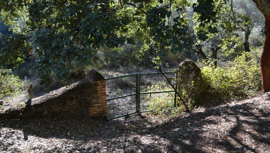 Terreno/Finca Rústica en Santa Ana la Real en venta - 200.000 € (Ref: 5022597)