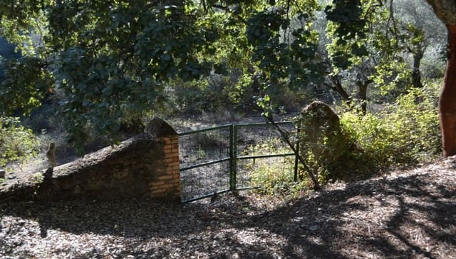 Terre non Aménagée à vendre à Santa Ana la Real - 200 000 € (Ref: 5022597)