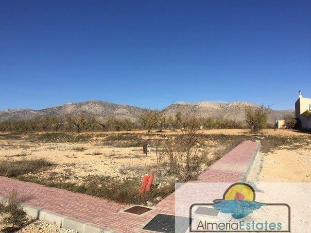 Terrain à Bâtir à vendre à Chirivel - 45 000 € (Ref: 3216638)