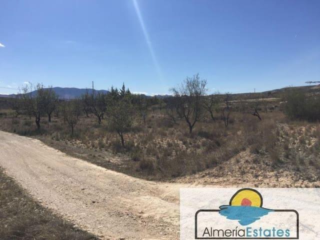 Terrain à Bâtir à vendre à Velez-Blanco - 20 000 € (Ref: 3216670)