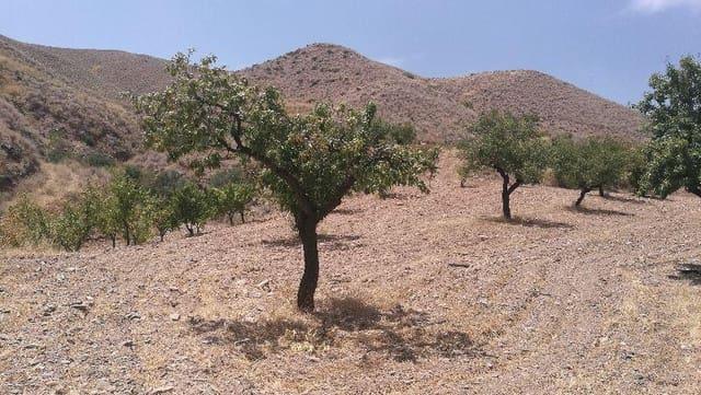 Terreno para Construção para venda em Taberno - 14 000 € (Ref: 3564126)