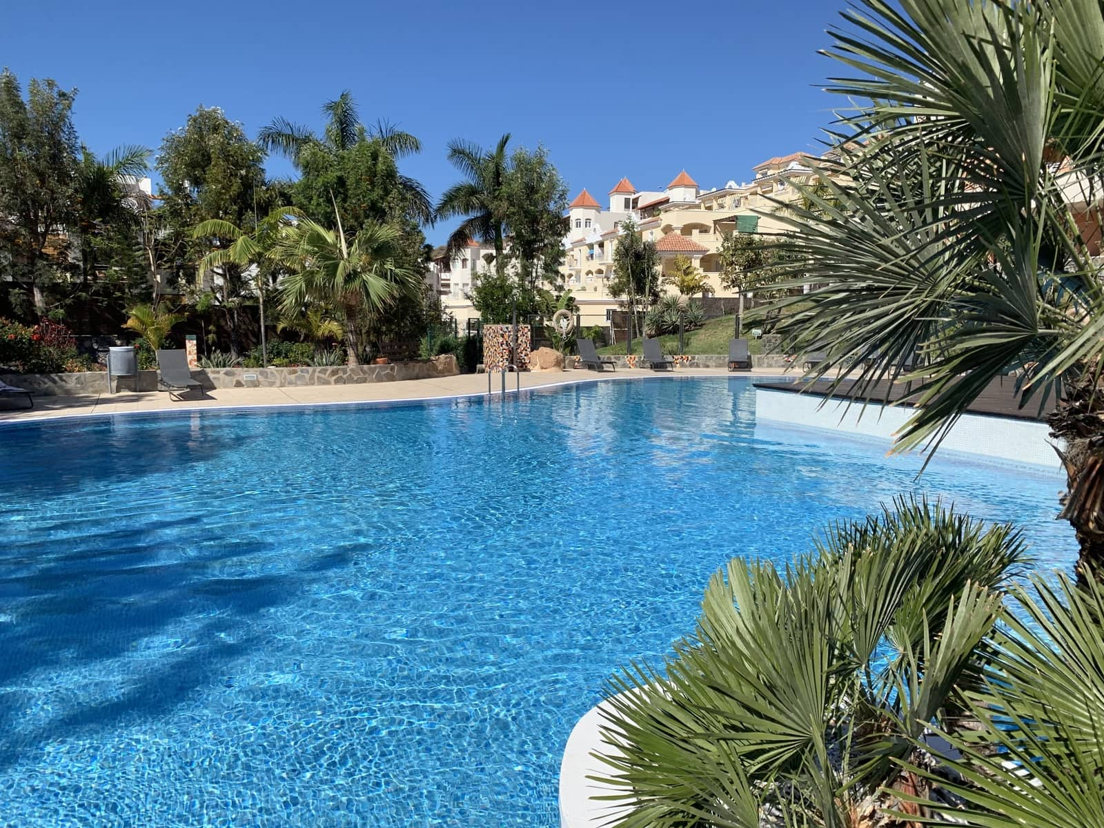 1 bedroom Apartment for rent in Playa de la Caleta with pool - € 750 (Ref: 5167036)