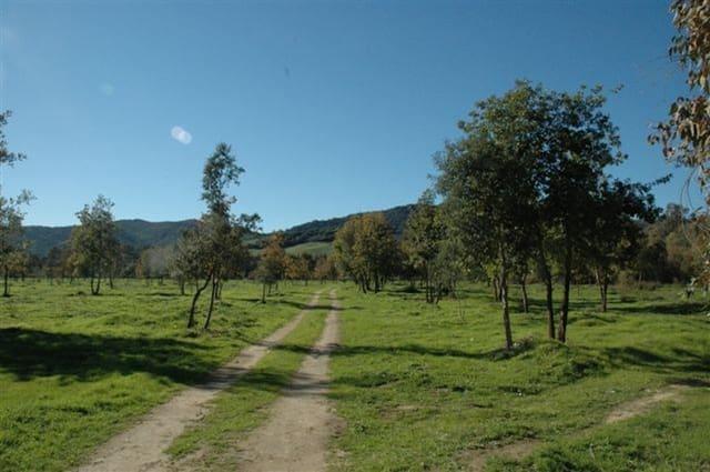 Solar/Parcela en Jimena de la Frontera en venta - 350.000 € (Ref: 5827592)