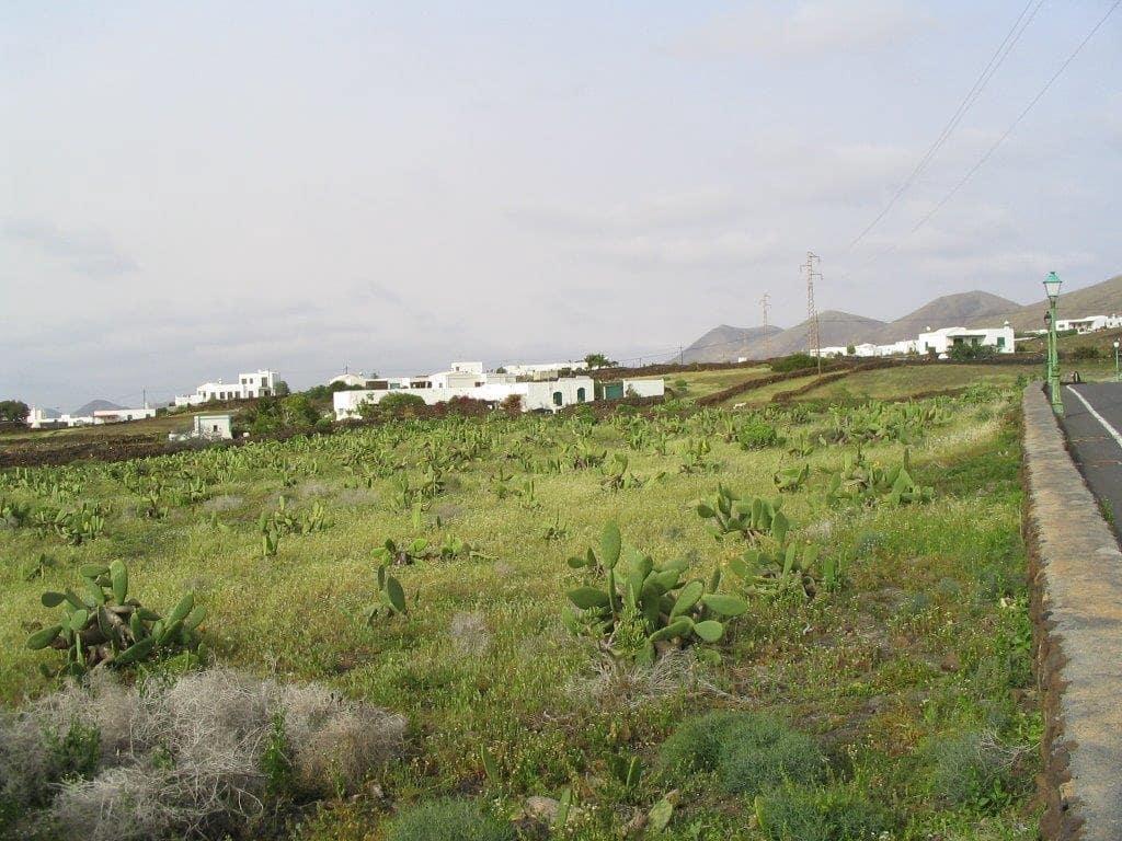 Ubebygd land til salgs i Yaiza - € 980 000 (Ref: 5460725)