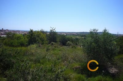 Landgrundstück zu verkaufen in Calig - 85.000 € (Ref: 3515596)