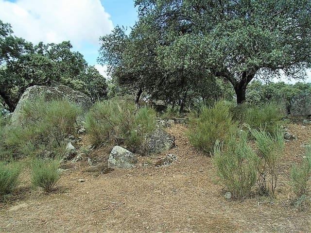 Ubebygd land til salgs i Arroyomolinos - € 49 950 (Ref: 3467991)