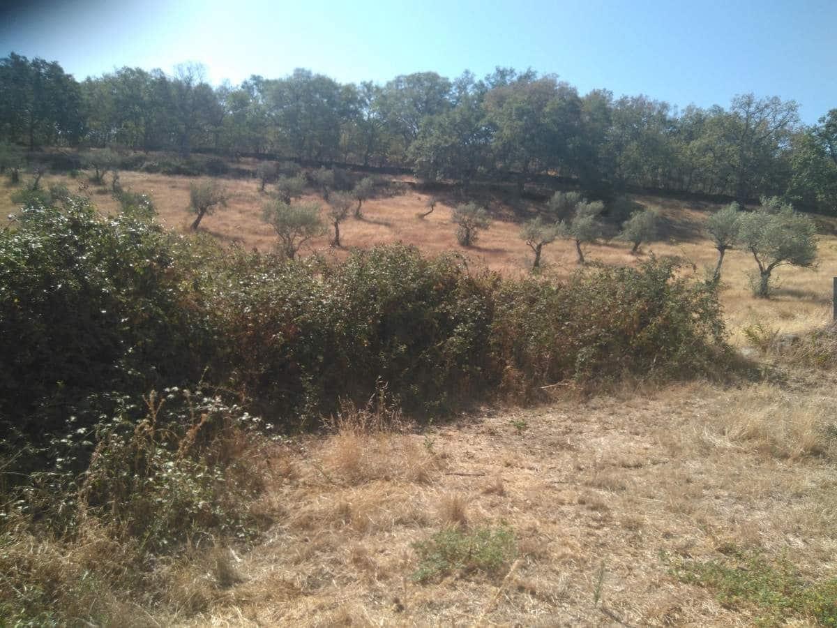 Quinta/Casa Rural para venda em San Martin de Trevejo - 177 800 € (Ref: 5673428)