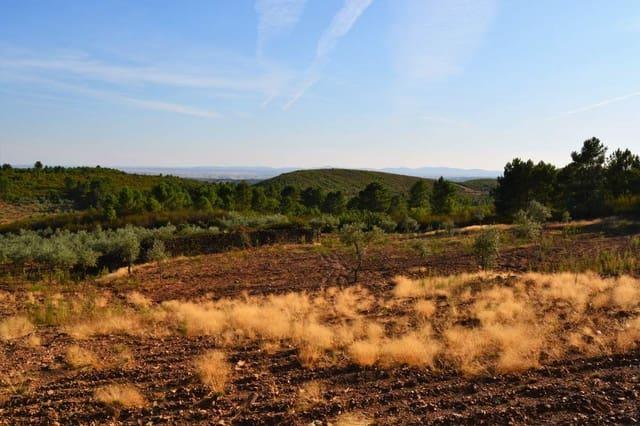 Ubebygd land til salgs i Gata - € 92 000 (Ref: 5673467)