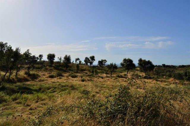 Grunde uden byggetilladelser til salg i Perales del Puerto - € 38.000 (Ref: 5673475)