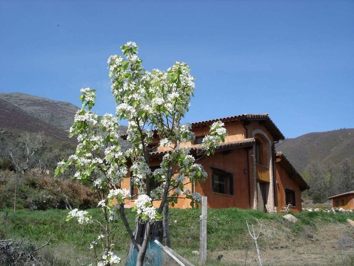 Quinta/Casa Rural para venda em Acebo - 519 000 € (Ref: 5673493)