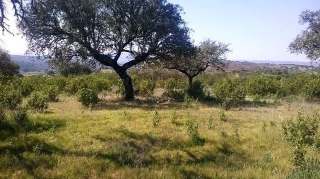 Teren niezagospodarowany na sprzedaż w Valverde del Fresno - 38 000 € (Ref: 5673494)