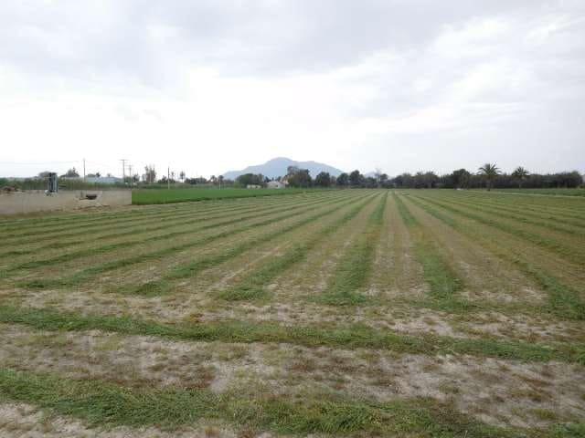 Ubebygd land til salgs i Las Casicas - € 60 000 (Ref: 4018060)