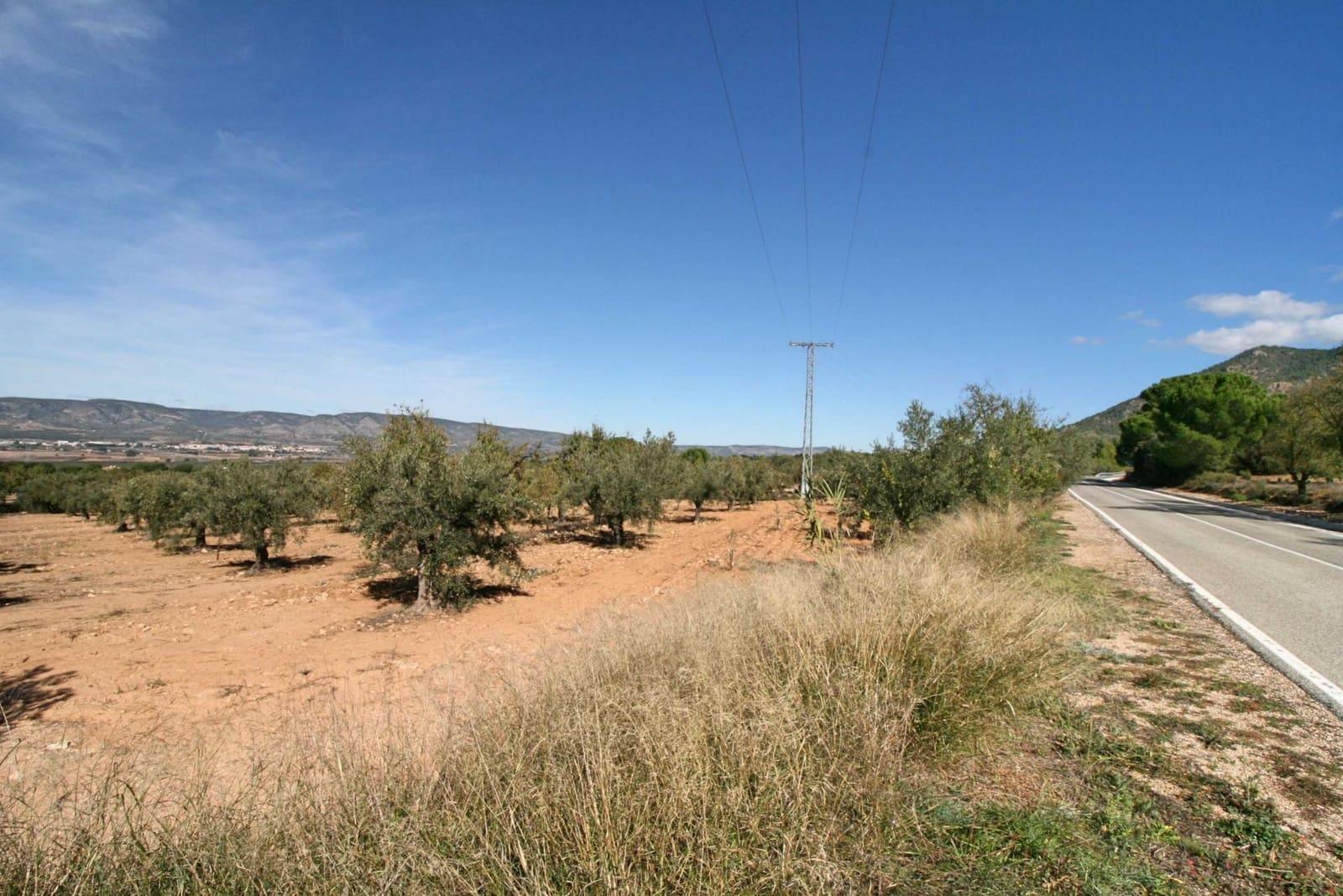 Byggetomt til salgs i Castalla - € 37 500 (Ref: 4255147)