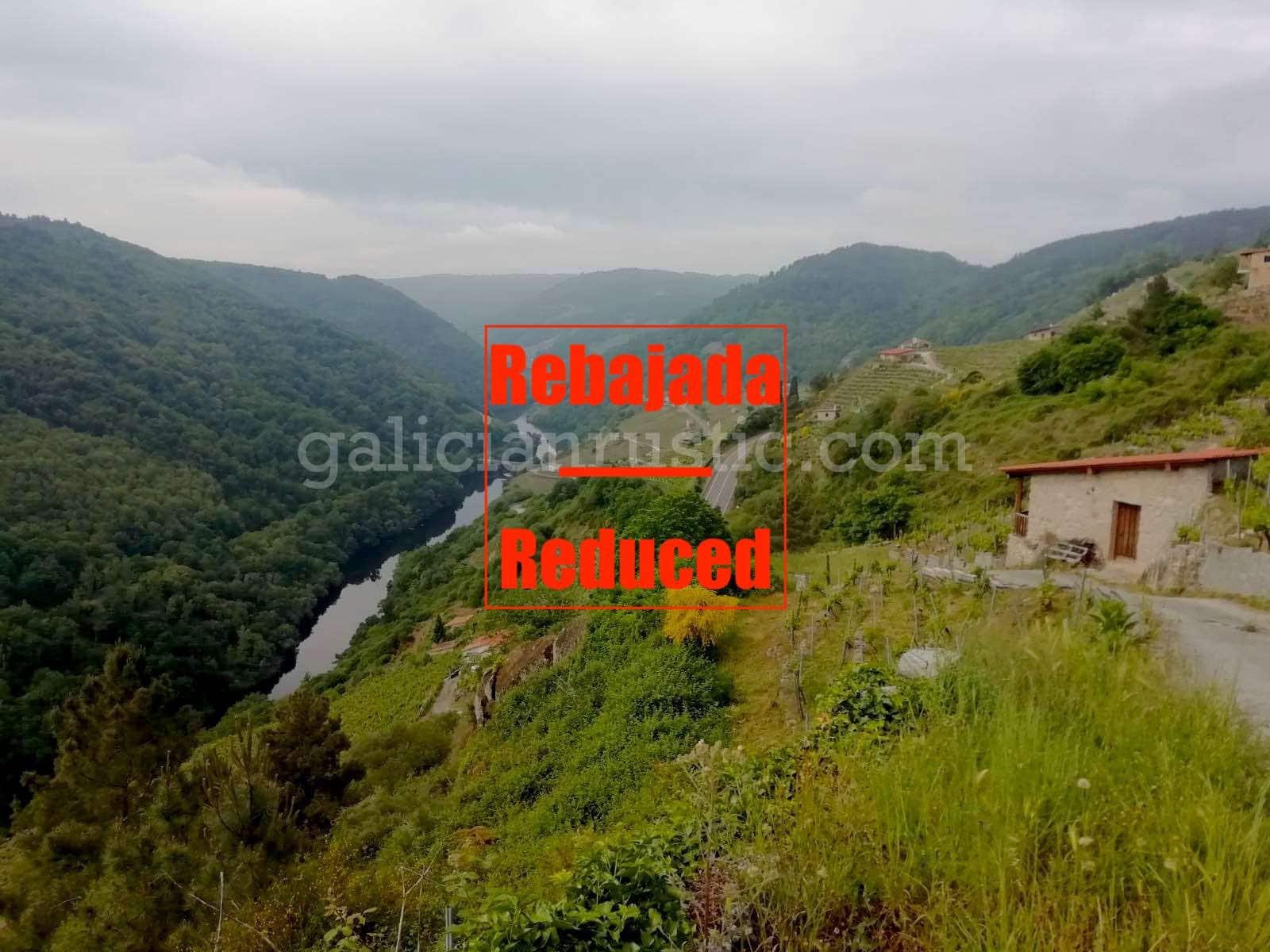Terre non Aménagée à vendre à Chantada - 54 000 € (Ref: 4639226)