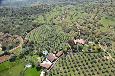Finca/Maison de Campagne à vendre à San Martin de Trevejo - 2 200 000 € (Ref: 5396204)