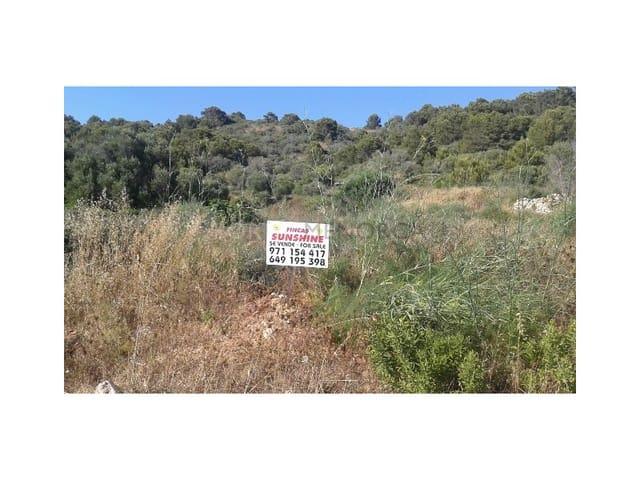 Byggetomt til salgs i Sant Tomas - € 240 000 (Ref: 4954853)