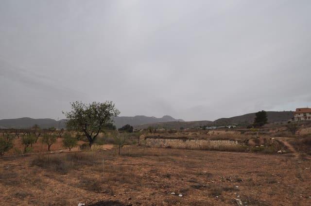 Terre non Aménagée à vendre à La Romana - 59 000 € (Ref: 3564156)