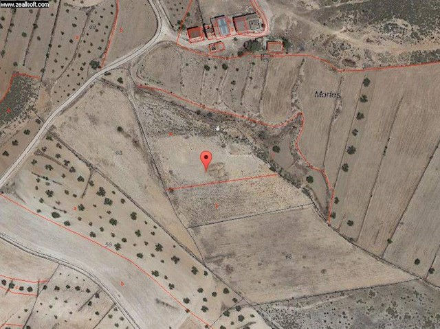 Undeveloped Land For Sale In Jumilla 19 995 Ref 3564164