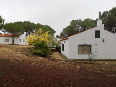 7 bedroom Commercial for sale in Albacete city - € 195,995 (Ref: 4888802)