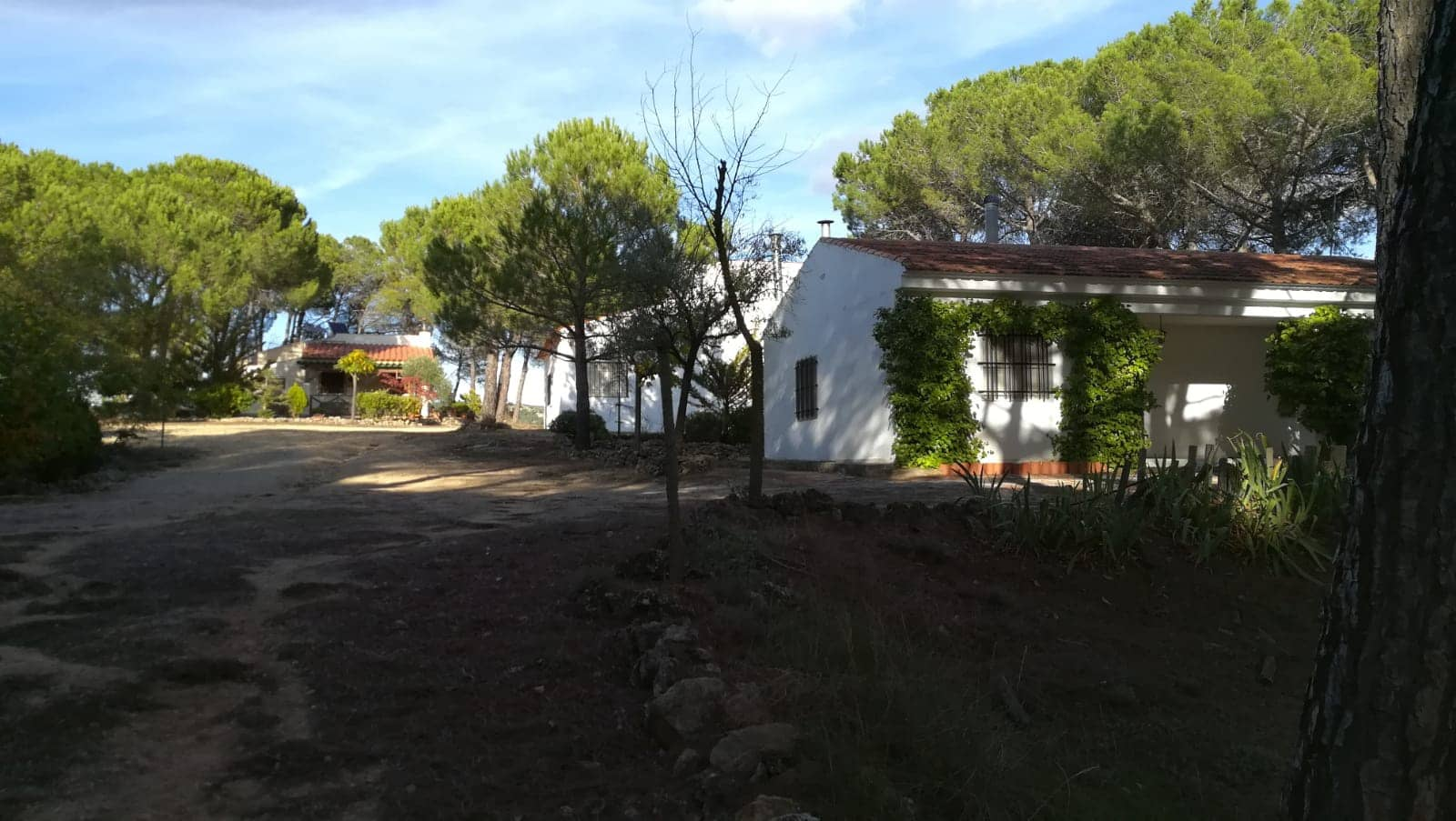 7 bedroom Villa for sale in Albacete city - € 195,995 (Ref: 4913932)