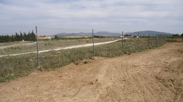 Terre non Aménagée à vendre à Pinoso - 52 995 € (Ref: 5536315)