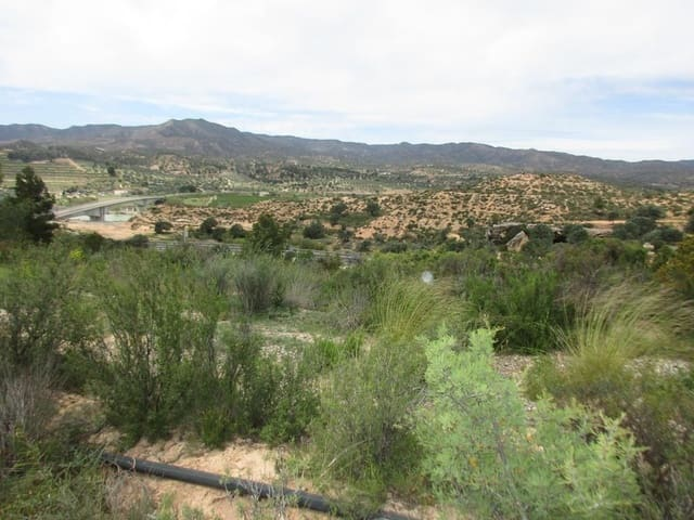 Undeveloped Land for sale in Riba-roja d'Ebre - € 9,000 (Ref: 5354899)