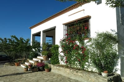 Property for rent in Spain - 9,839 houses & apartments