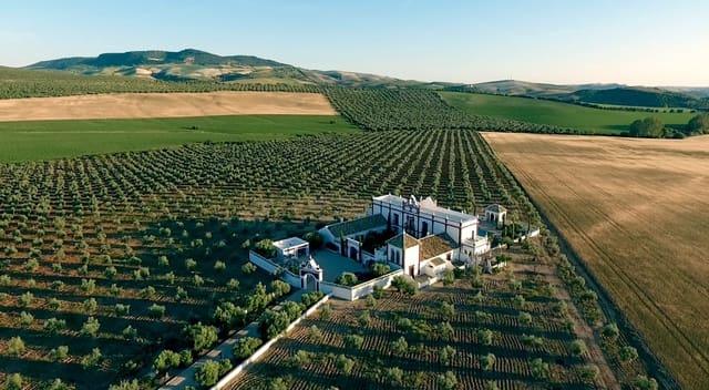 7 quarto Quinta/Casa Rural para venda em Montellano - 2 950 000 € (Ref: 6074643)
