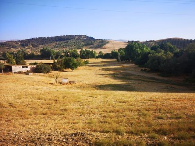 Ubebygd land til salgs i Ronda - € 315 000 (Ref: 6292458)