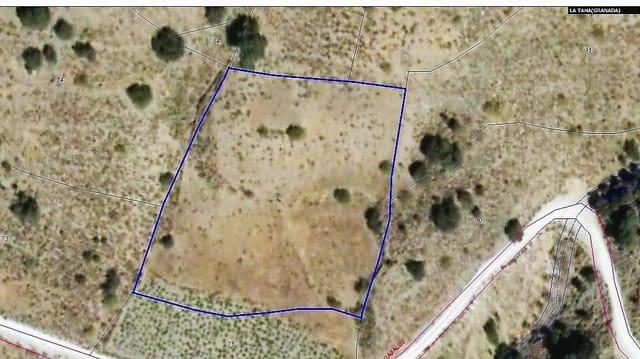 Landgrundstück zu verkaufen in Pitres - 5.500 € (Ref: 5826035)