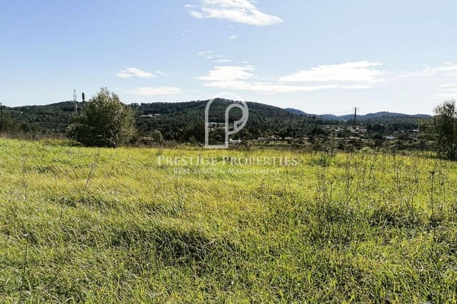 Undeveloped Land for sale in Santa Gertrudis de Fruitera - € 800,000 (Ref: 5350166)