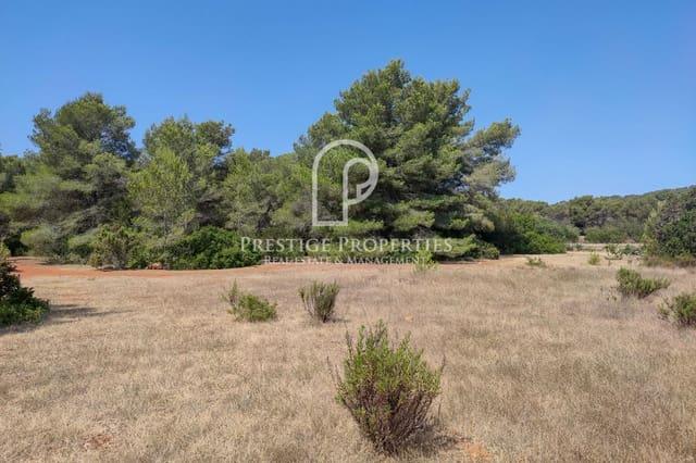 Terreno Não Urbanizado para venda em Sant Carles de Peralta - 650 000 € (Ref: 6253804)
