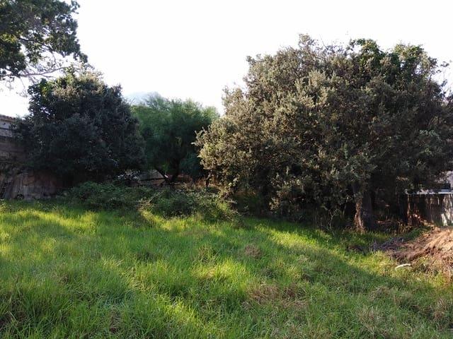 Działka budowlana na sprzedaż w Cala San Vicente / Cala Sant Vicenc - 350 000 € (Ref: 5711970)