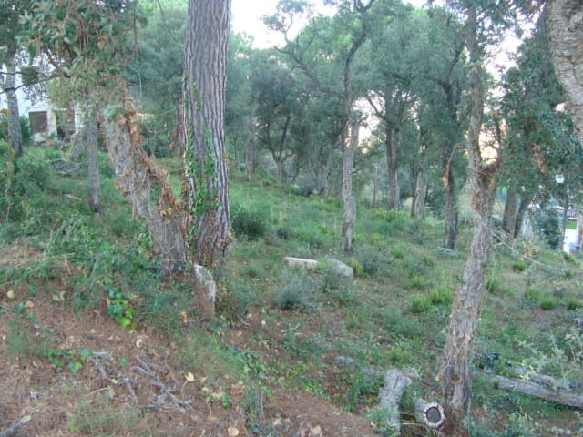 Undeveloped Land for sale in Calonge - € 129,000 (Ref: 2818674)
