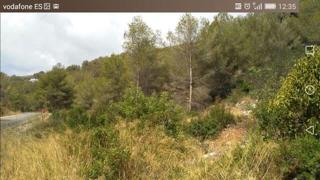 Terrain à Bâtir à vendre à Arenal - 450 000 € (Ref: 5563395)