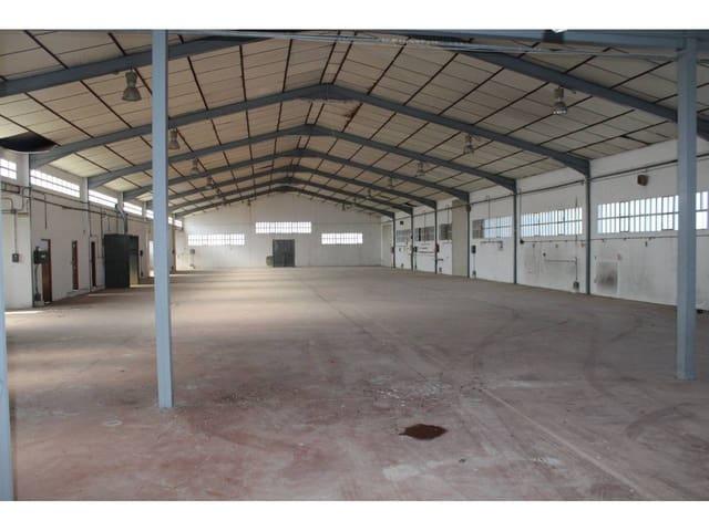 Commercieel te huur in Alberic - € 1.480 (Ref: 3763492)