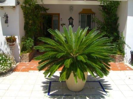 5 sypialnia Finka/Dom wiejski na sprzedaż w Alhaurin de la Torre z basenem garażem - 530 000 € (Ref: 812811)