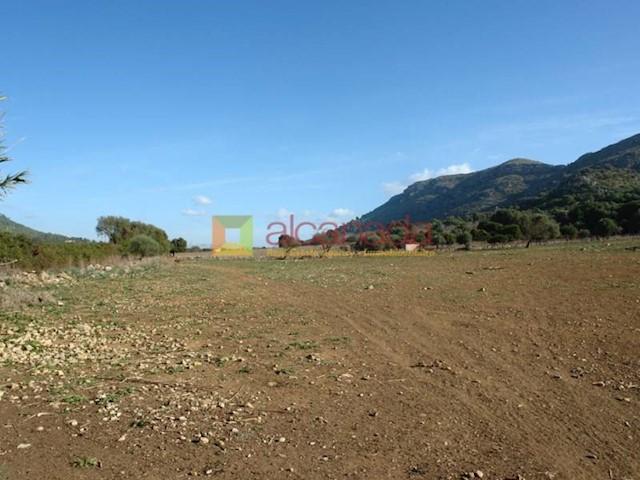 Terre non Aménagée à vendre à Alcudia - 320 000 € (Ref: 3483716)