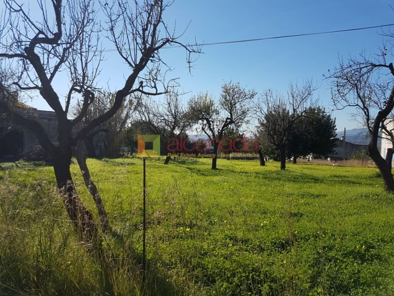 Building Plot for sale in Campanet - € 85,000 (Ref: 4726094)