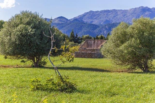 Terrain à Bâtir à vendre à Pollensa / Pollenca - 449 000 € (Ref: 5220236)