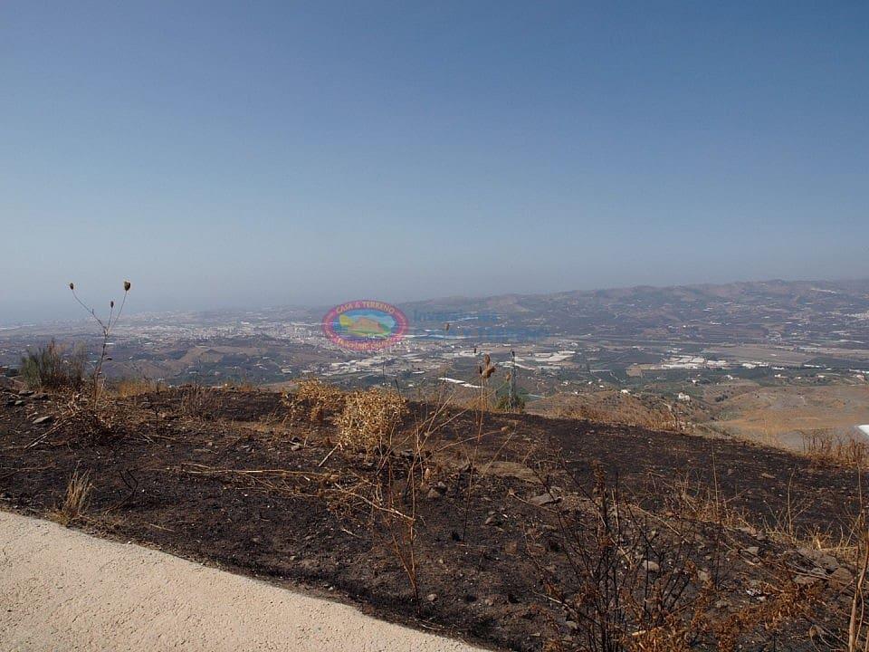 Terre non Aménagée à vendre à Velez-Malaga - 52 000 € (Ref: 4454300)