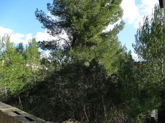 Terrain à Bâtir à vendre à Santa Margalida - 198 871 € (Ref: 4624571)